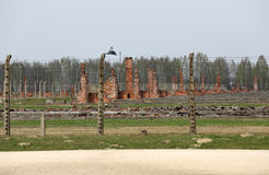 Auschwitz-Birkenau, Fotografering för Bildbyråer