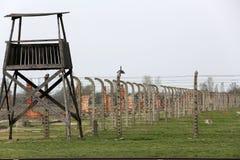 Auschwitz-Birkenau, Royaltyfria Foton