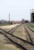 Auschwitz-Birkenau Royaltyfri Foto