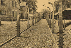 Auschwitz Birkenau camp Royalty Free Stock Photo