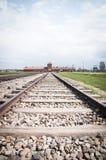 Auschwitz-Birkenau drevspår arkivfoton