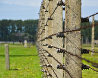 Auschwitz Birkenau fence wire. OSWIECIM, POLAND -  SEPTEMBER 19, 2015:Outdoors barbed wire fence of the  Auschwitz Birkenau Concentration Camp in Poland Royalty Free Stock Image