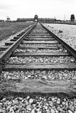 Auschwitz-Birkenau koncentrationsläger Arkivbild
