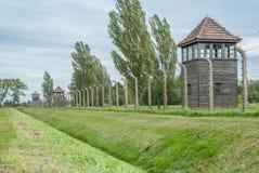 Auschwitz - Birkenau omkretsstaket arkivfoton