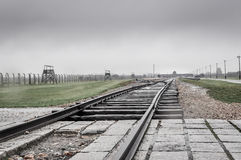 AUschwitz Birkenau rails. Into the camp Royalty Free Stock Images