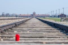 Auschwitz Birkenau - Taborowy ślad i główne wejście Koncentracyjny obóz zdjęcie royalty free