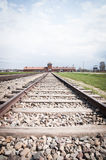 Auschwitz-Birkenau train track Stock Photos