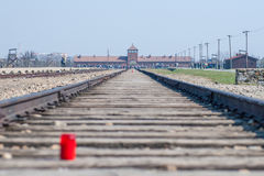 Auschwitz Birkenau - trilha do trem e entrada principal Campo de concentração Foto de Stock Royalty Free