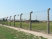 Auschwitz Concentration Camp Fencing Stock Photography