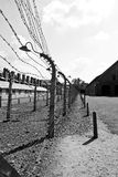 Auschwitz concentration camp in poland stock illustration