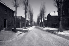 Auschwitz in de winter Stock Foto