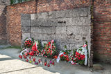 Auschwitz Death Wall Royalty Free Stock Images