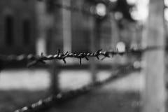 Auschwitz dettaglia II Fotografia Stock