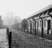 Auschwitz Stock Photos