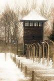 Auschwitz electrificó la cerca imagen de archivo libre de regalías