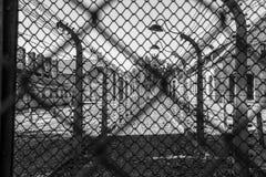 Auschwitz Fence Stock Photography