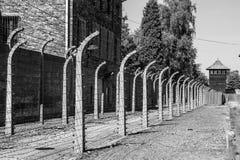 Auschwitz Fence Stock Photo
