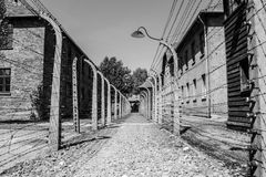 Auschwitz Fence Royalty Free Stock Photography