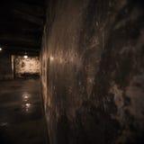 Auschwitz gaskammare Arkivfoto