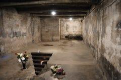 Auschwitz I - Birkenau krematorium I Arkivfoto