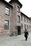 Auschwitz i dag Arkivfoton