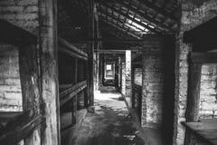 Auschwitz II - Birkenau inkvartera i en barack inre Royaltyfri Foto