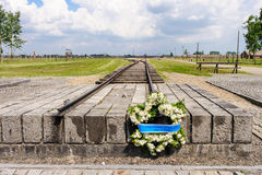 Auschwitz II - Birkenau-kroon royalty-vrije stock fotografie