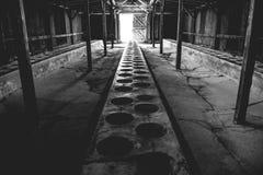 Auschwitz II - Birkenau latrine barracks Royalty Free Stock Images