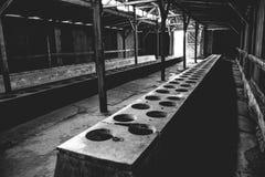 Auschwitz II - Birkenau latrine barracks Stock Photos