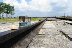 Auschwitz II - Birkenau-oliekaarsen royalty-vrije stock foto