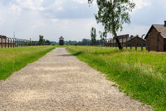 Auschwitz II - Birkenau path from rail ramp to Sector I. Auschwitz II - Birkenau path from rail ramp to women's barracks at Sector Ia and Sector Ib Royalty Free Stock Images