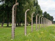 Auschwitz II Birkenau, Polen, 4 November, 2014 - Duitse Nazi Concentration en de uitroeiing kamperen royalty-vrije stock foto's