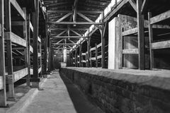 Auschwitz II - Birkenau wooden barracks interior Royalty Free Stock Images