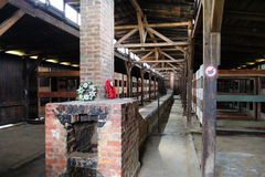Auschwitz II - Birkenau wooden barracks interior Stock Photos