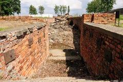 Auschwitz II - crematorio III di Birkenau Immagine Stock Libera da Diritti