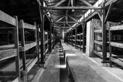 Auschwitz II - inre Birkenau träbaracker Royaltyfri Foto