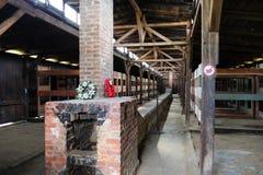 Auschwitz II - inre Birkenau träbaracker Arkivfoton