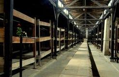 auschwitz inkvartera i en barack det poland fånget Arkivfoton