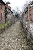In auschwitz Stock Photo