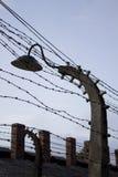 Auschwitz koncentrationsläger royaltyfri fotografi