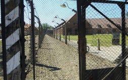 Auschwitz koncentrationsstaket och försett med en hulling - tråd Solig dag på Juli 7th, 2015 - Krakow, Polen Arkivfoton