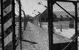 Auschwitz koncentrationsstaket och försett med en hulling - tråd Solig dag på Juli 7th, 2015 svart white krakow poland Fotografering för Bildbyråer