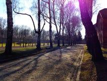 Auschwitz-Konzentrationslager war ein Netz der Konzentration und Ausrottunglager bauten auf und funktionierten durch das Drittes  Stockfotos