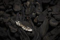 Auschwitz, Polen royalty-vrije stock afbeeldingen