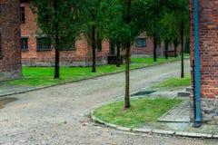 Auschwitz Polen - Augusti 12, 2017: territoriet av den Auschwitz koncentrationsläger, tegelstenbaracker Fotografering för Bildbyråer