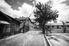 AUSCHWITZ POLEN - Juli 11, 2017; Museum Auschwitz - förintelse Royaltyfria Foton