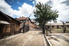 AUSCHWITZ POLEN - Juli 11, 2017; Museum Auschwitz - förintelse Royaltyfria Bilder