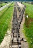 Auschwitz, Polonia: Pistas del tren fotos de archivo libres de regalías