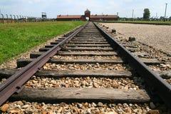 auschwitz railtracks Arkivbild
