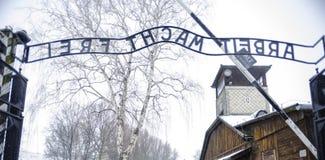 Auschwitz: utgång från koncentrationsläger och utrotningen Royaltyfri Fotografi
